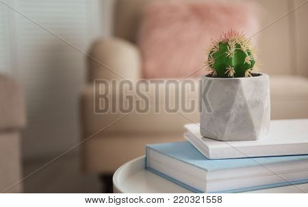Houseplant on stack of books in living room