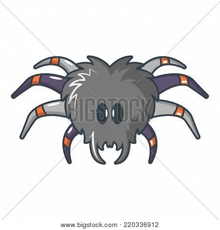 Tarantula icon. Cartoon illustration of tarantula vector icon for web