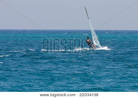 A windsurfer on the Red Sea