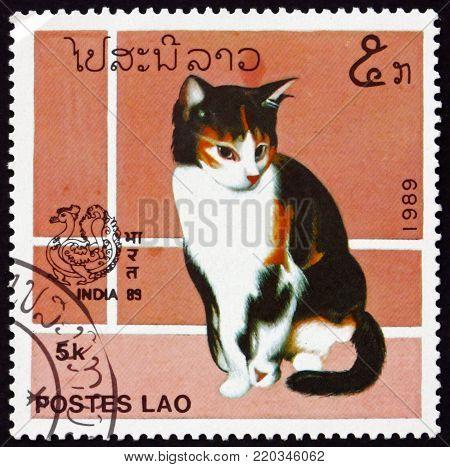 LAOS - CIRCA 1989: a stamp printed in Laos shows domestic cat, felis silvestris catus, circa 1989