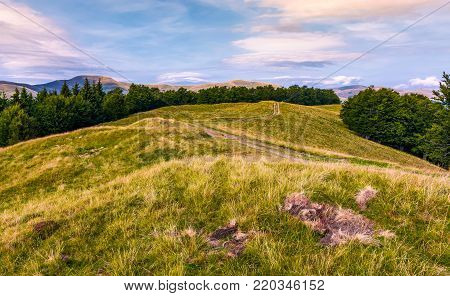 off road trail through grassy hills of Carpathians with beech forests. beautiful landscape of Svydovets mountain ridge under the gorgeous cloudscape in evening.