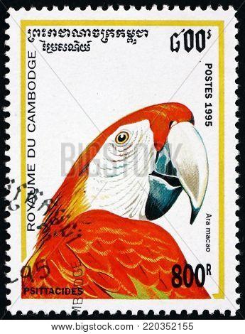CAMBODIA - CIRCA 1995: a stamp printed in Cambodia shows scarlet macaw, ara macao, bird, circa 1995