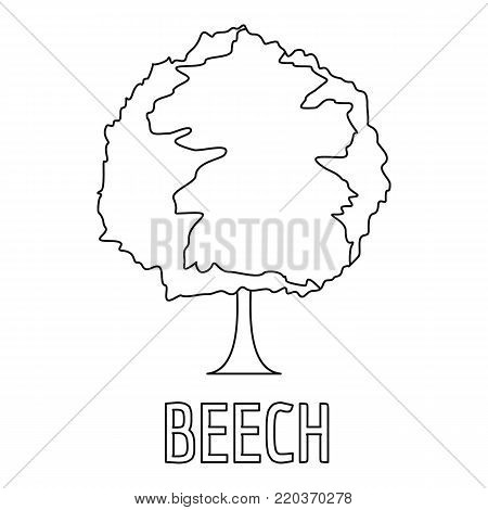 Beech icon. Outline illustration of beech vector icon for web