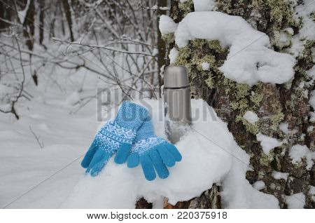 Metal thermos with hot tea drink. Winter. A pretty girl. snow-covered forest, trees in the snow. enjoys the winter. a hot drink pours from the thermos. wears gloves