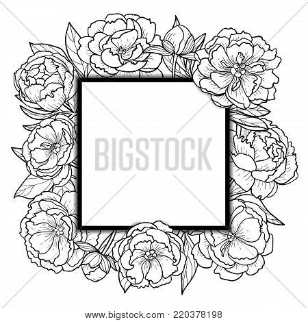 Mock Peony Flowers, Vector & Photo (Free Trial) | Bigstock