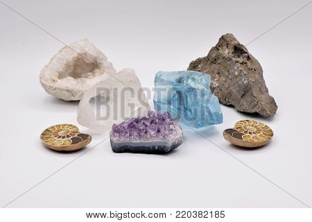 Fossils and gemstones arranged on a seamless white background, including geode, nautilus, brachiopods, and crinoid.