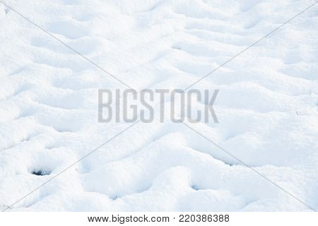 Beautiful nature in winter season with tractor tire or print foot of big tractor's wheel in field, pattern nature