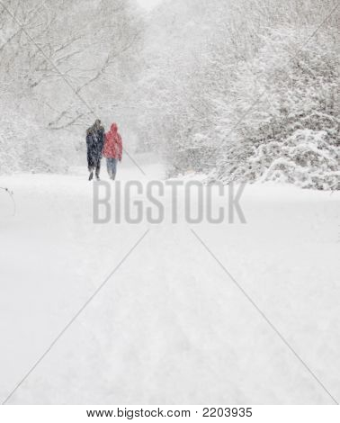 Man And Woman Walk In Snow