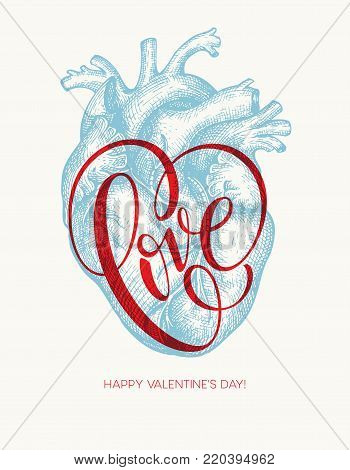 Valentines day card with Human heart and Love lettering. Vector illustration EPS10