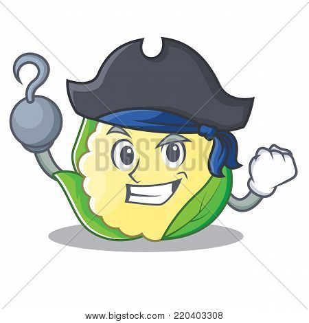 Pirate cauliflower character cartoon style vector illustration