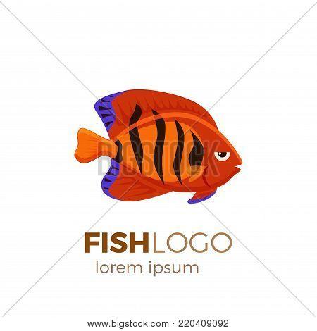 Marine life tropical colorful fish set illustration in cartoon. Aquarium draft vector design.flame angelfish logo