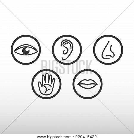 The five senses. Eye, ear, nose, hand, mouth. Black Icons.