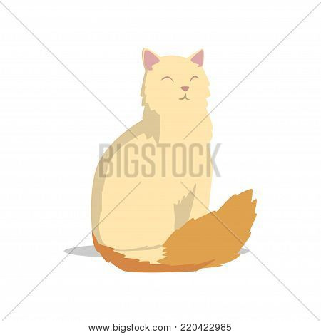 Long-haired turkish angora cat with pink ears and fluffy red tail. Cartoon character of domestic animal with happy muzzle. Design for craft packaging or vet clinic. Isolated flat vector illustration.