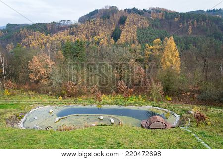 Pretty Wooden Pier At Natural Swimming Pond Purifying Water Plants