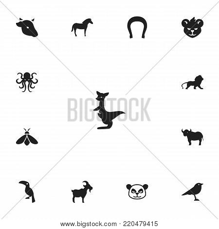 Set of 13 editable animal icons. Includes symbols such as panda, lion, bee. Can be used for web, mobile, UI and infographic design.
