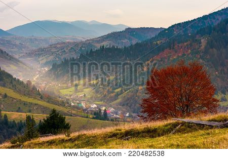 village in a beautiful valley in mountains. hazy autumnal landscape. location Mizhhirya, TransCarpathia, Ukraine