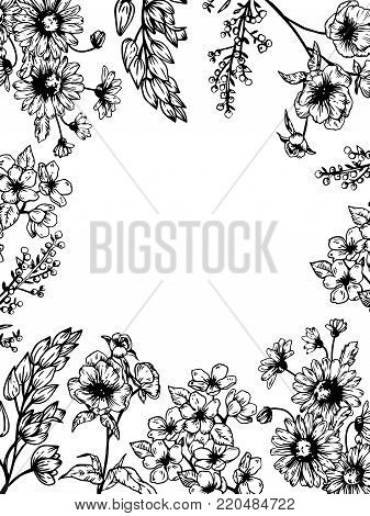 Flowers and plants engraving vector illustration. Scratch board style imitation. Hand drawn image.
