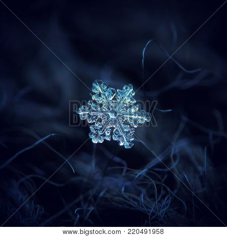 Snowflake at high magnification. Macro photo of real snow crystal: small stellar dendrite with compact hexagonal shape and complex inner structure, six short ornate arms ang glossy relief surface.