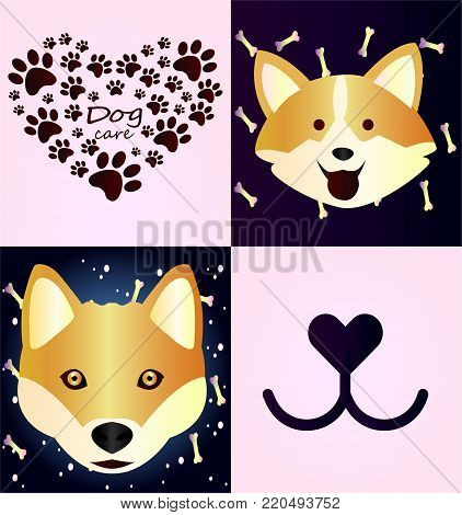 Collection of bright posters with pets. Redheaded husky, close-up on gradient background. Merry welsh corgi. Dog's goodies - a gradient pattern. Zabolta about animals - dog's feet