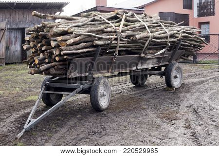 Trailer full of chopped fire-wood old fashioned farmers cart at Poland's countryside rural life