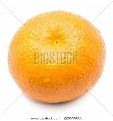 One whole Clementine with water drops isolated on white background