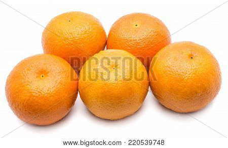 Group of five whole orange Clementines with water drops isolated on white background