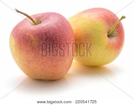 Two apples (Evelina variety) isolated on white background