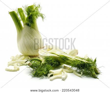 Florence fennel isolated on white background one bulb one half fresh branch and blanched pieces