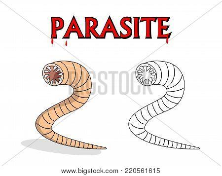 Parasitic nematode worms in outline and vector cartoon design