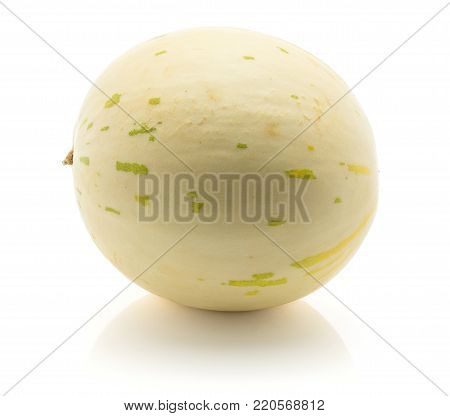 One melon (Piel de Sapo, Honeydew) isolated on white background