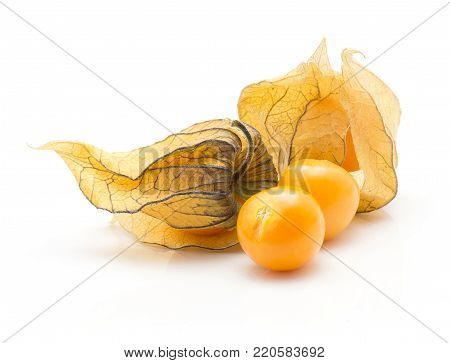 Physalis stack isolated on white background two orange berries and two in husk