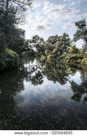 tributary of Olse and Stonavka river in Karvina city in Czech republic with trees reflected on Olse river water ground and blue sky with cloud