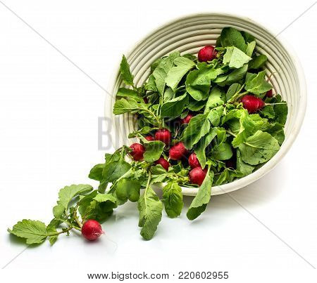 Scattered red radish with leaves in rattan bowl isolated on white background