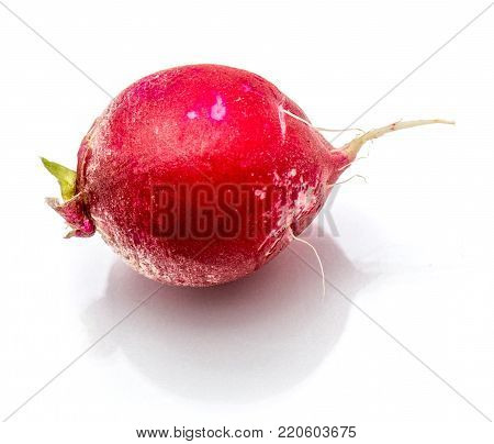 One whole red radish isolated on white background
