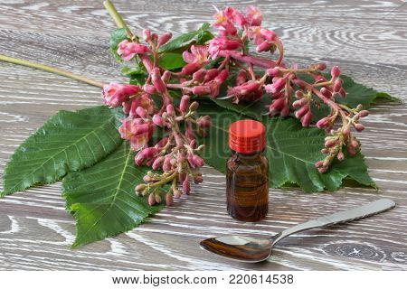 bach flower drops in a glassbottle with red chestnut blooms