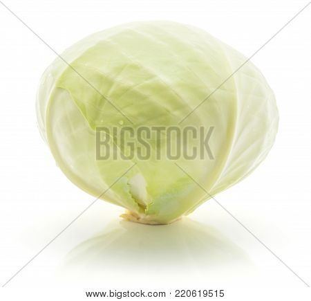 White cabbage isolated on white background one whole head