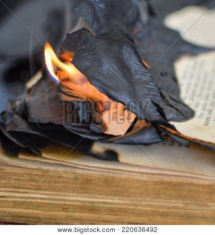 Burnt leaves of old and torn books.