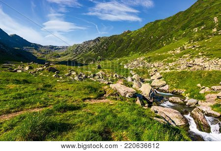 stream among the rocks in grassy valley. gorgeous summertime landscape of Fagaras mountains