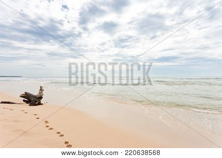 Asia - Sri Lanka - Ahungalla - At a wide white lonely beach