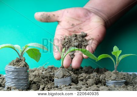 Hand of a businessman giving soil to a tree growing on golden coins - Business with csr practice and environmental concern