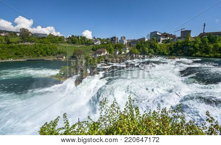 Powerful stream at  Rhein Waterfall on a sunny day. Germany