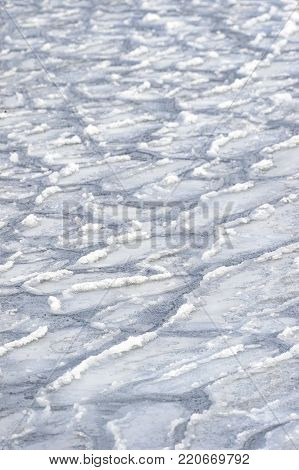 Rough wave patterns and rough surfaces in developing salt water ice