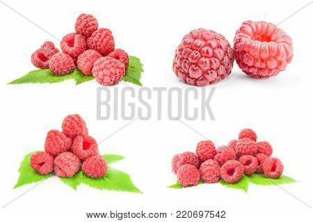 Collection of raspberry fruit isolated on a white cutout