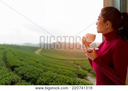 Asian woman put red sweater fresh morning drinking hot tea and looking out the window for see Tea farm on sunny day. Lifestyle Concept.