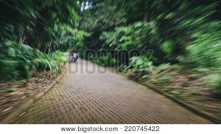 Purposely out of of focus path in woods with people - headache, nausea and illness metaphor