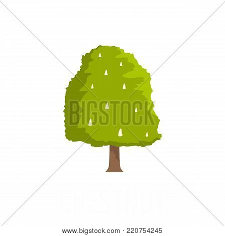 Chestnut tree icon. Flat illustration of chestnut tree vector icon isolated on white background