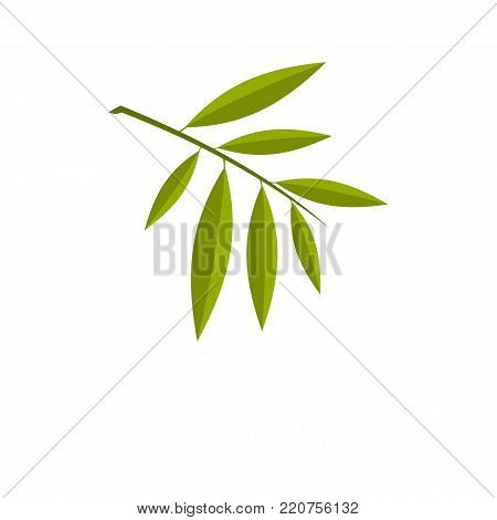 Willow leaf icon. Flat illustration of willow leaf vector icon isolated on white background
