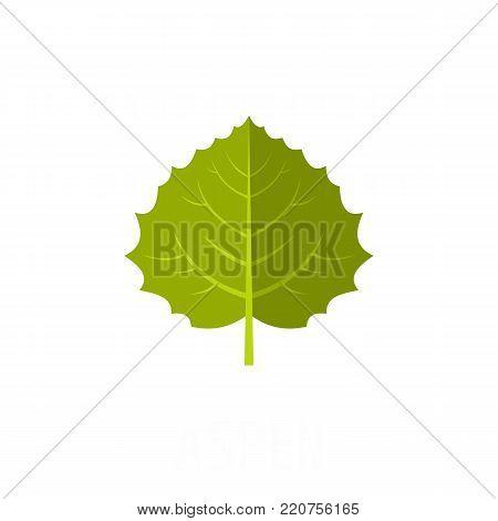 Aspen leaf icon. Flat illustration of aspen leaf vector icon isolated on white background