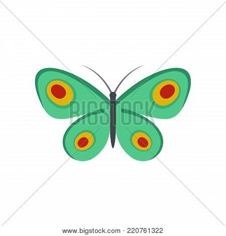 Unknown butterfly icon. Flat illustration of unknown butterfly vector icon isolated on white background