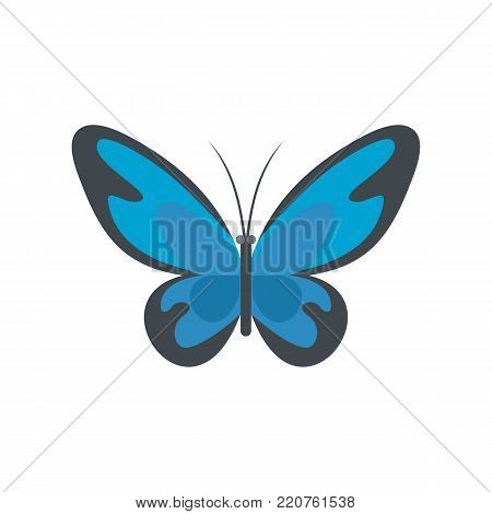 Flying moth icon. Flat illustration of flying moth vector icon isolated on white background
